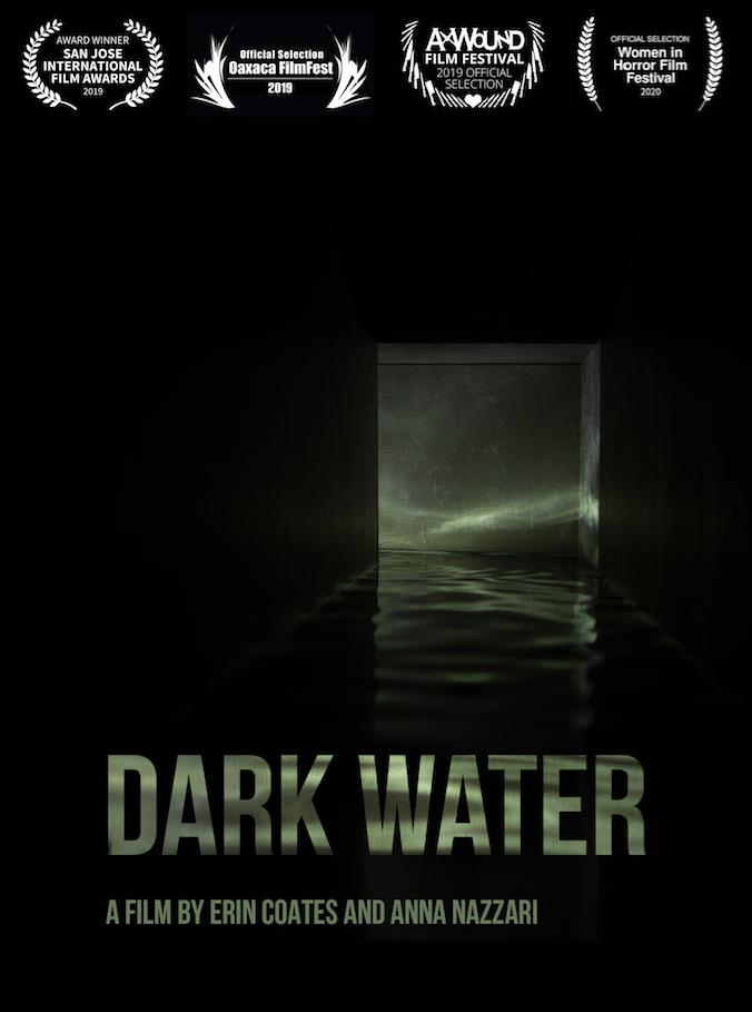 Dark Water logo