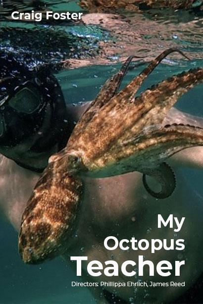 My Octopus Teacher logo