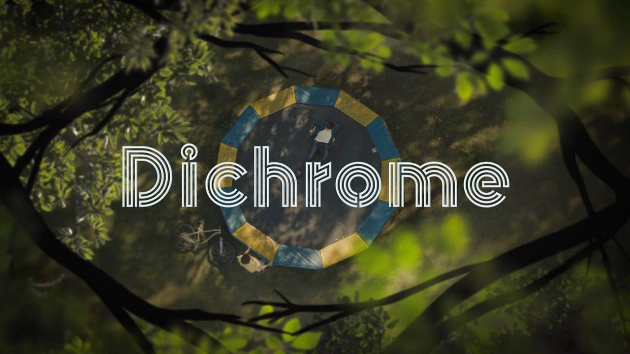 Dichrome logo